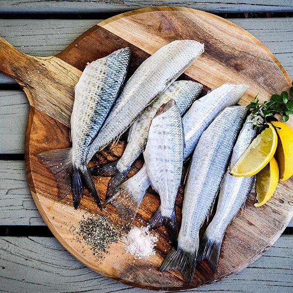 parini_pesce_cucina